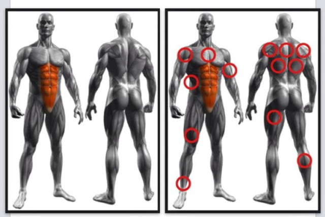 Target area for conventional crunch exercises (left) in comparison to the modified, VCC exercise used in Polykinetics (right)