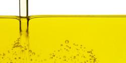 la purezza dell'olio