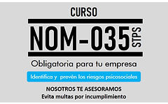 NOM-035-STPS LOGO.jpg