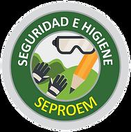 logo BÁSICO DE SEGURIDAD E HIGIENE.png