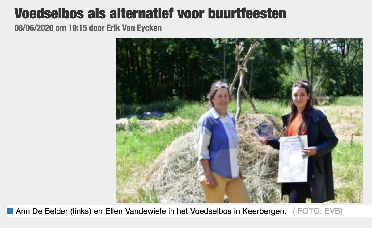 Nieuwsblad image