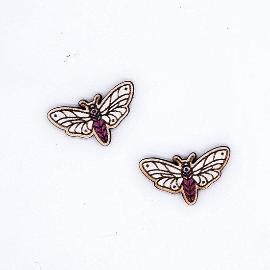 Wooden moth stud earrings