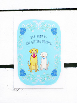 Save the Date Dog Design