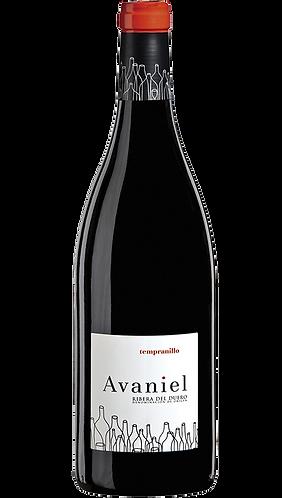 Avaniel 2019