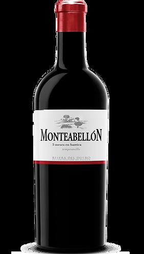 Magnum de Monteabellón 5 Meses 2019