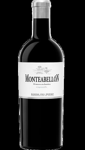 Magnum de Monteabellón 14 Meses 2017