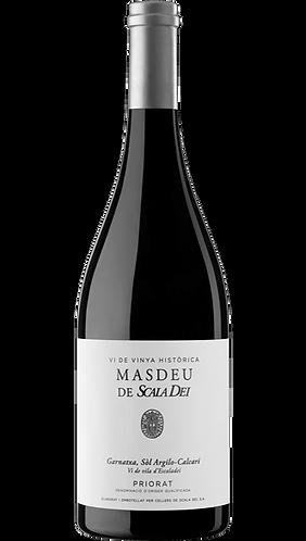 Scala Dei Masdeu 2013