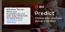 DPD 24 hr delivery service for all online orders