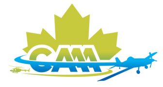 CAAA+logo_colour.png