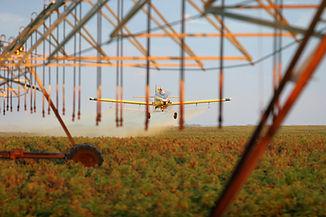 180908-SUN-spraying2-R.jpg