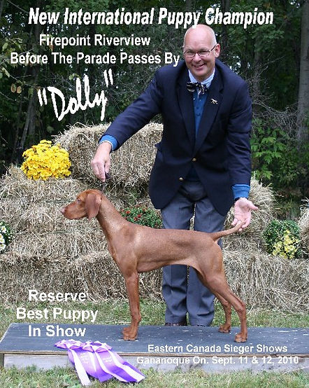 dolly20.jpg