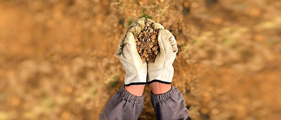 i nostri terreni costituiti in prevalenza da argille ferrittizzate