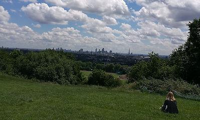 Hampstead park.jpg