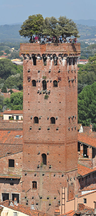 Lucca_Guinigi_from_Torre_Torre_dell'Orol