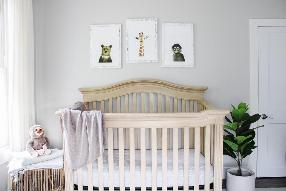 Jungle Nursery by Cedar Lane Designs