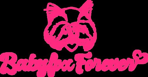 Logotype_BabyfoxForever_cat.png