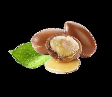 kisspng-argan-oil-grape-seed-oil-argan-5