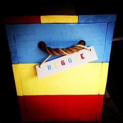 toy chest reggie