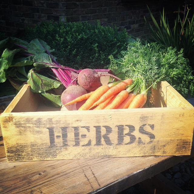 herbs veg