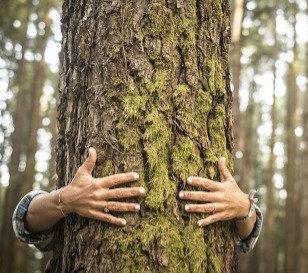 L'abbraccio di Madre Terra