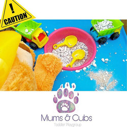 Caution! Cubs at play!_We had so much fun being construction workers, dentists, firefighters, police
