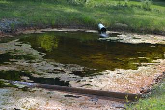Bioremediation of Groundwater Communities