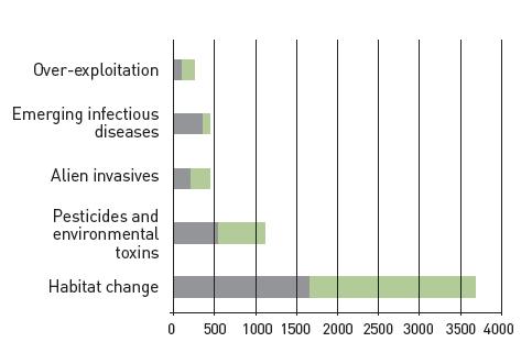 Chanson et al., 2008