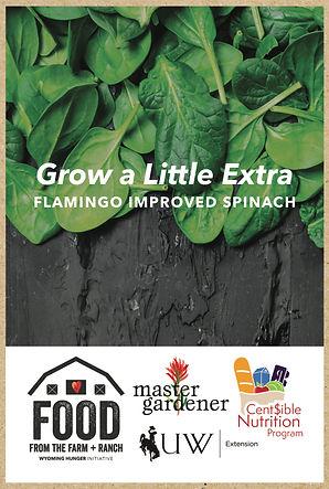seed packet kraft mockup spinach.jpg