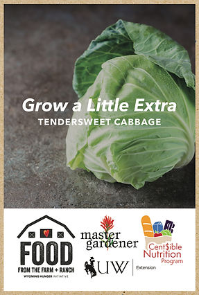 seed packet kraft mockup cabbage.jpg