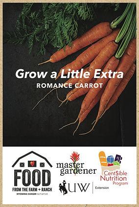 seed packet kraft mockup carrots.jpg