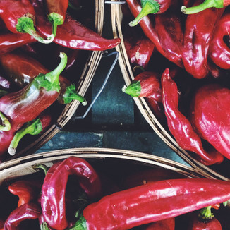 New Mexico red peppers
