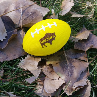 Racines UW Homecoming Football
