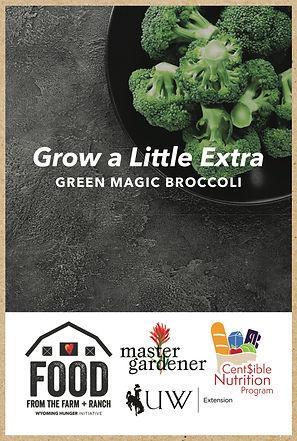 seed packet kraft mockup broccoli.jpg