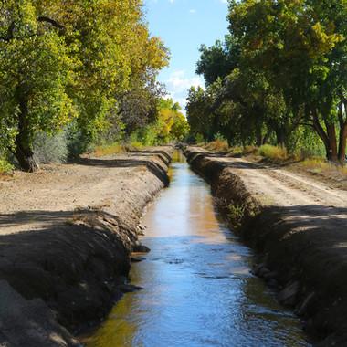 Rio Grande Agricultural Land Trust