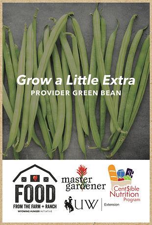 seed packet kraft mockup beans.jpg