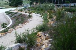 Garden Path through Battered Bank