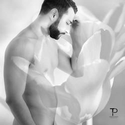 La fleur que tu m'avais jetée