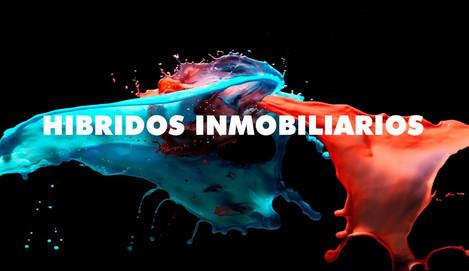 HIBRIDOS INMOBILIARIOS