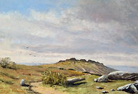 From feather tor dartmoor oil painting by David Mather