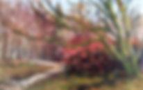 "En Plein Air, ""Camellia bush"" oil painting by David Mather"