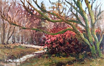 "En Plein Air, ""Camellia bush"" oil painting by David Mather"
