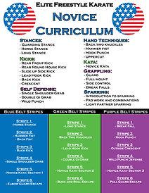 Public Curriculum Novice Poster 2.jpg