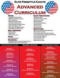 Public Curriculum Advanced Poster.jpg