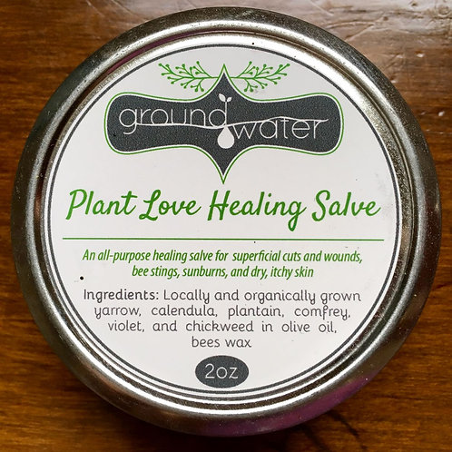 2oz Plant Love Healing Salve
