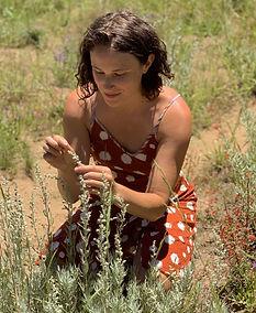 Amy Terepka Groundwater Healing