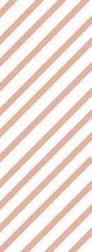 縞2.jpg