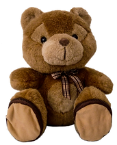 teddy-2542148_1920.png