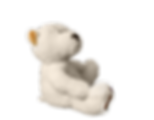 teddy-1313634_1920.png
