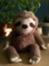 sloth-3991480_1920.jpg