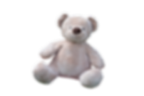 teddy-bear-1085162_1920.png